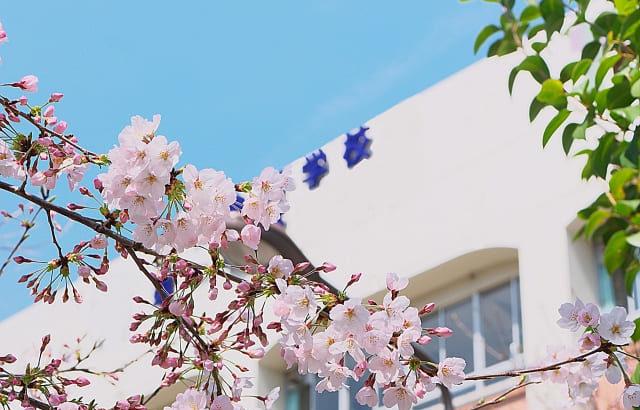 医師への道~医学部1年生の学生生活~